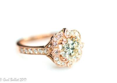 2017 10 25 Diamond rings-D 0749